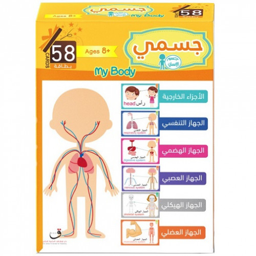 بطاقات جسم الإنسان