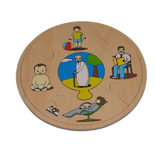 تركيب خشبي - نمو الإنسان
