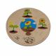تركيب خشبي - نمو النبات