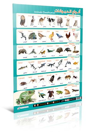 لوحة أنواع الحيوانات